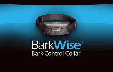 barkwise bark control collar