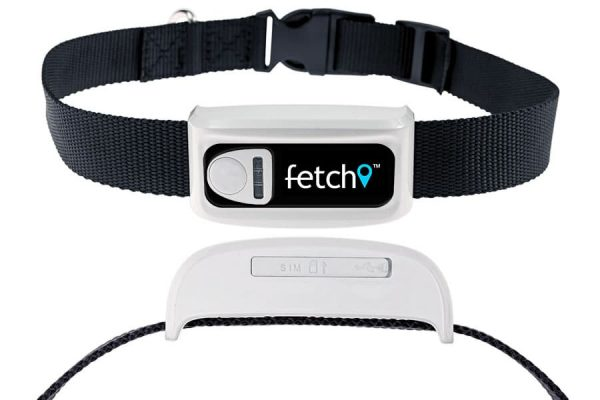 fetch gps pet tracking collar
