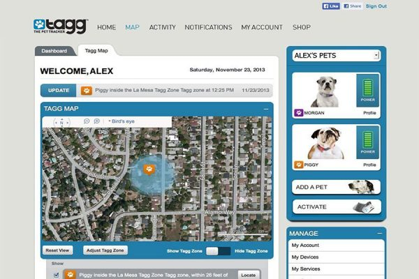 tagg pet tracker program